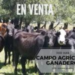 GINESTET SERVICIOS INMOBILIARIOS VENDE
