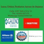 Lucas Urbina Productor Asesor de Seguros