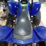 Cuatriciclo Panther 110cc