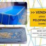VENDO PELOPINCHO usada $15000