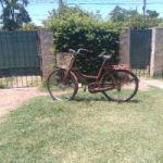 Vendo bicicleta muceta