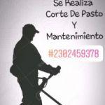 •Busco trabajo     -Nombre : Ezequiel  -Responsable en todos los aspectos  -Entrego curriculum   - Soy de General Pico