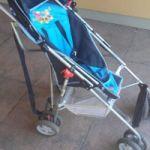 Paraguita bebesit