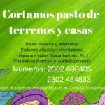 CORTAMOS PASTO DE CASAS Y TERRENOS