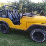 Vendo o permuto jeep IKA 58