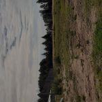 Terreno a la venta, verdes del pinar, Gral Pico
