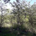 Vendo terreno en villa Ciudad Parque los Reartes