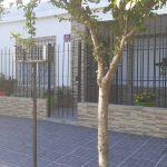 Casa a la venta B° San Etelvino, Gral. Pico, L.P.