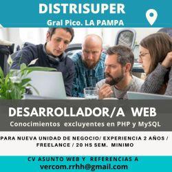 DISTRISUPER busca desarrollar/a web para nueva unidad de negocio