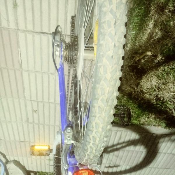 Bicicleta Rod 24 nueva