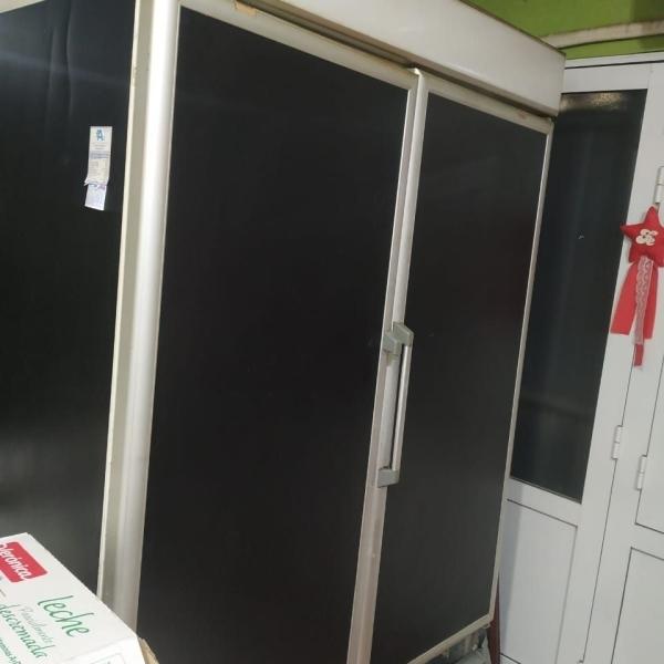 VENDO Heladera exhibidora de 2 puertas