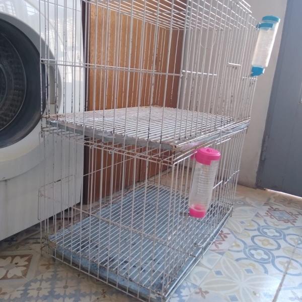 Vendo jaulas para cobayo o conejos