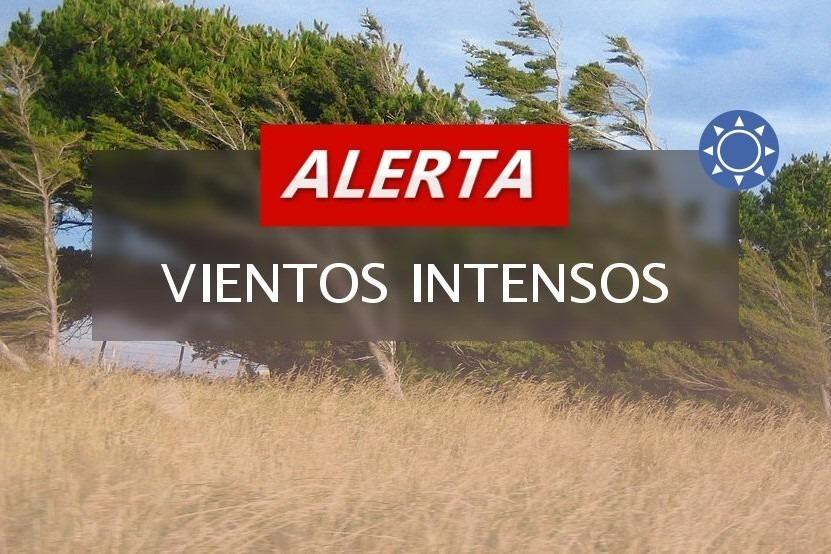 Alerta meteorológico por vientos intensos con ráfagas para el sur de La Pampa