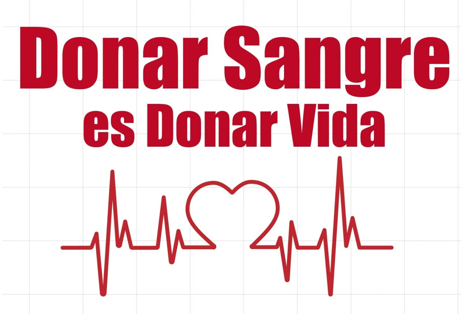 Día del Donante de Sangre: Desde la UNLPam se suman activamente a los esfuerzos del Servicio de Hemoterapia del Hospital