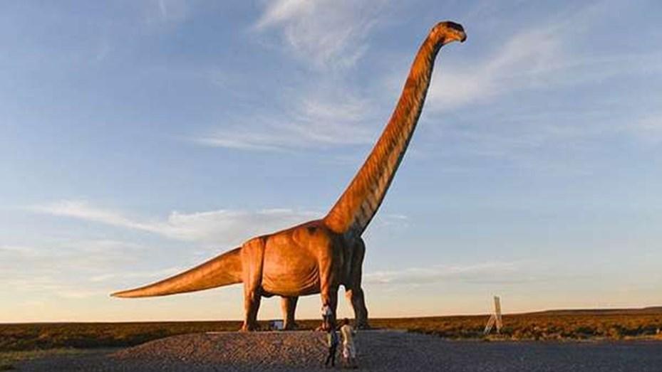 Hallan restos fósiles de un Titanosaurio en Neuquén: cada vértebra pesaba 200 kilos