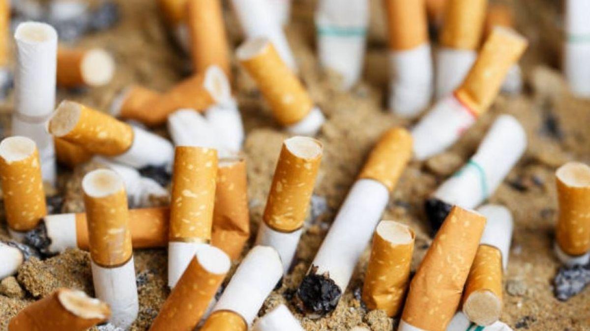 El impacto de las colillas de cigarrillo en el medio ambiente: cada una contamina hasta 50 litros de agua