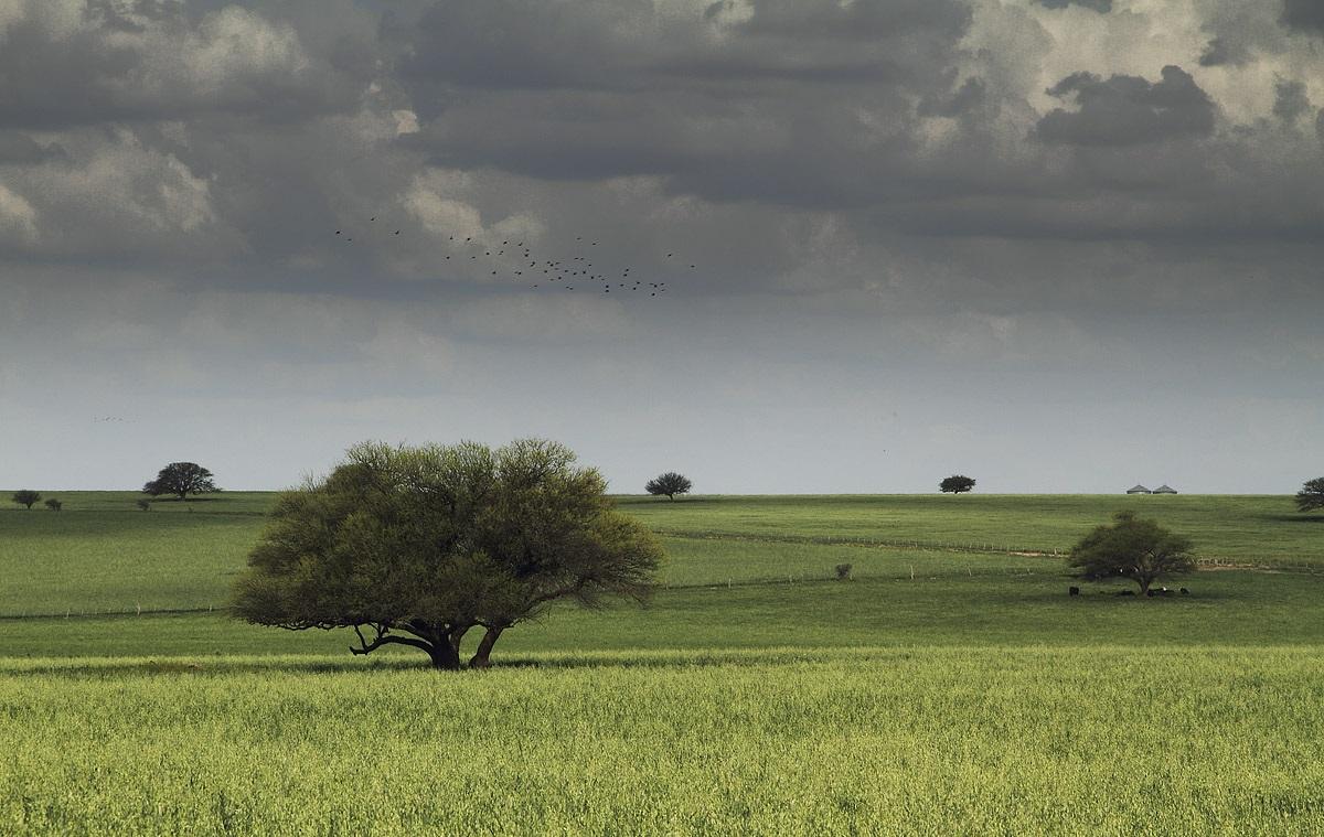 """El alerta meteorológico por """"lluvias y tormentas intensas"""" se extendió también al sur de La Pampa"""