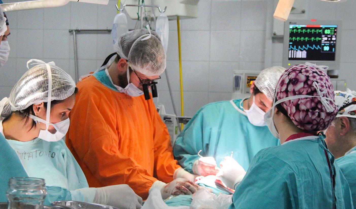 En 2019 hubo récord de donantes y trasplantes de órganos en Argentina