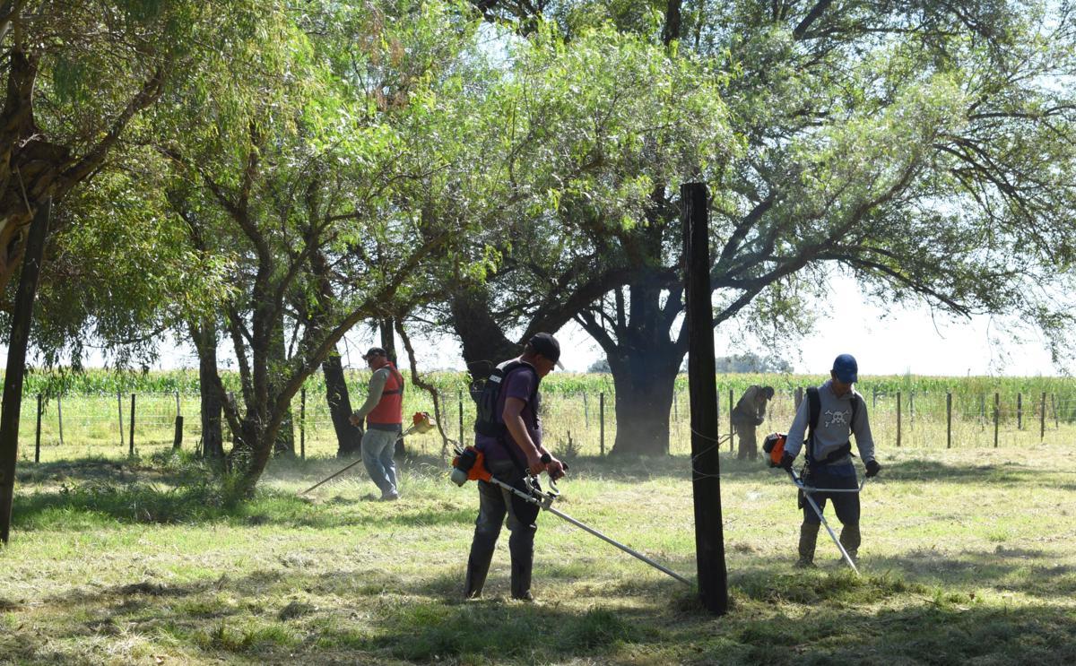 El Municipio realizó una importante jornada de limpieza colectiva en Trebolares