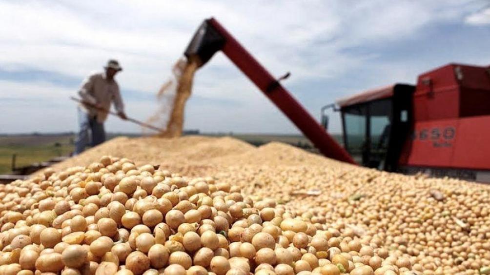 El campo en alerta por temor a una suba de 3 puntos para las retenciones a la soja