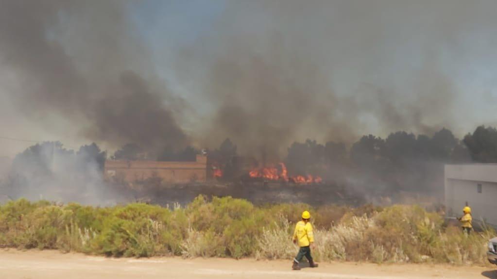 Intenso trabajo de Bomberos Voluntarios ante un incendio de grandes proporciones en Pehuen Có