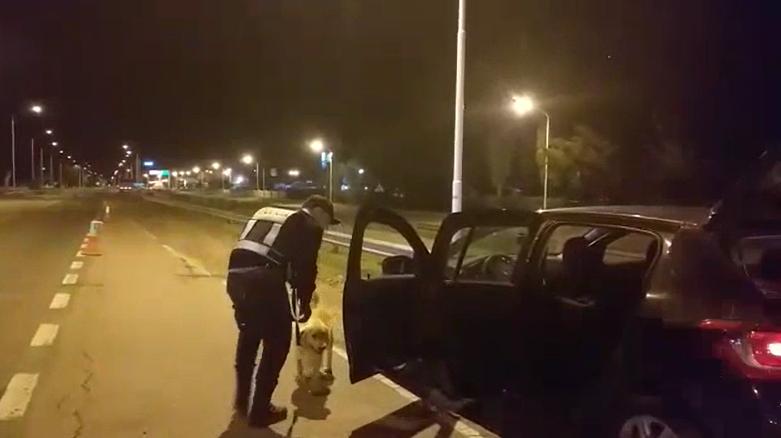 """El perro Catriel hizo su """"debut"""" detectando marihuana en un operativo realizado en el puesto caminero de Castex"""