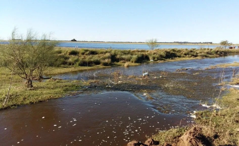 La Pampa participará de la próxima reunión del Comité de Cuenca del río Quinto