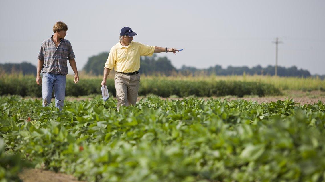 El campo realizará un paro de cuatro días por el aumento de las retenciones a la soja