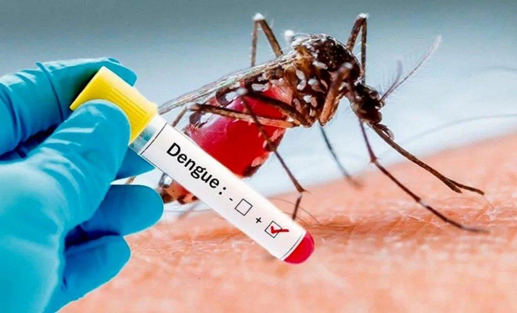 Ya hay 2.942 infectados de dengue en la Argentina: En La Pampa aún no hay casos, pero continúan las tareas de prevención