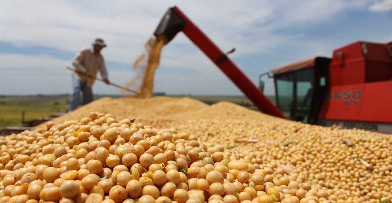 El Gobierno publicará mañana el aumento en las retenciones a la soja y pasará de 30 a 33 por ciento