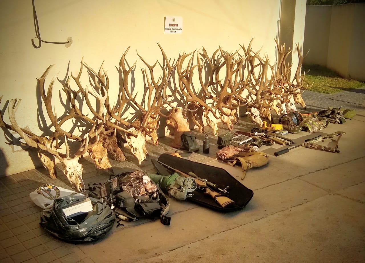 Allanamientos en Telén: Detuvieron a dos cazadores furtivos, secuestraron una camioneta, armas, cabezas de ciervo colorado y múltiples elementos