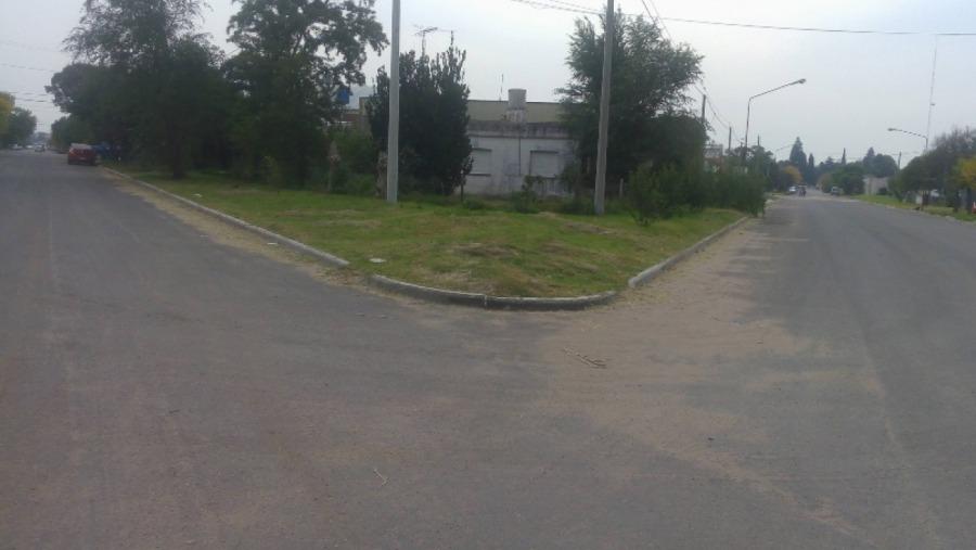 Avanzan las obras de pavimento urbano en Ingeniero Luiggi