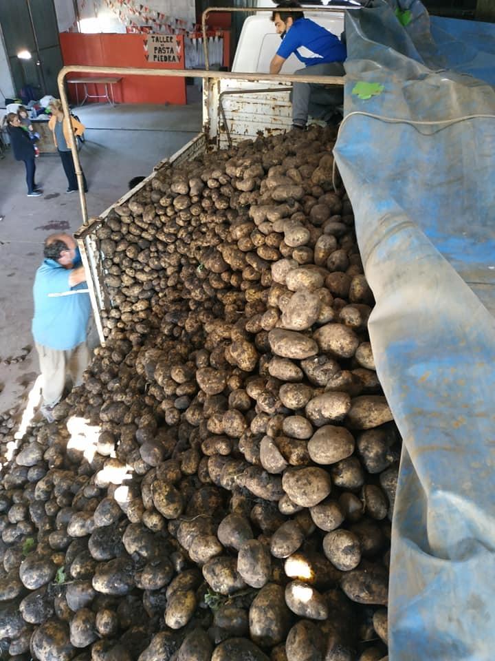 Cooperativa La Comunitaria agradeció las gestiones realizadas para que a La Pampa llegaran de regalo 25.000 kilos de papas