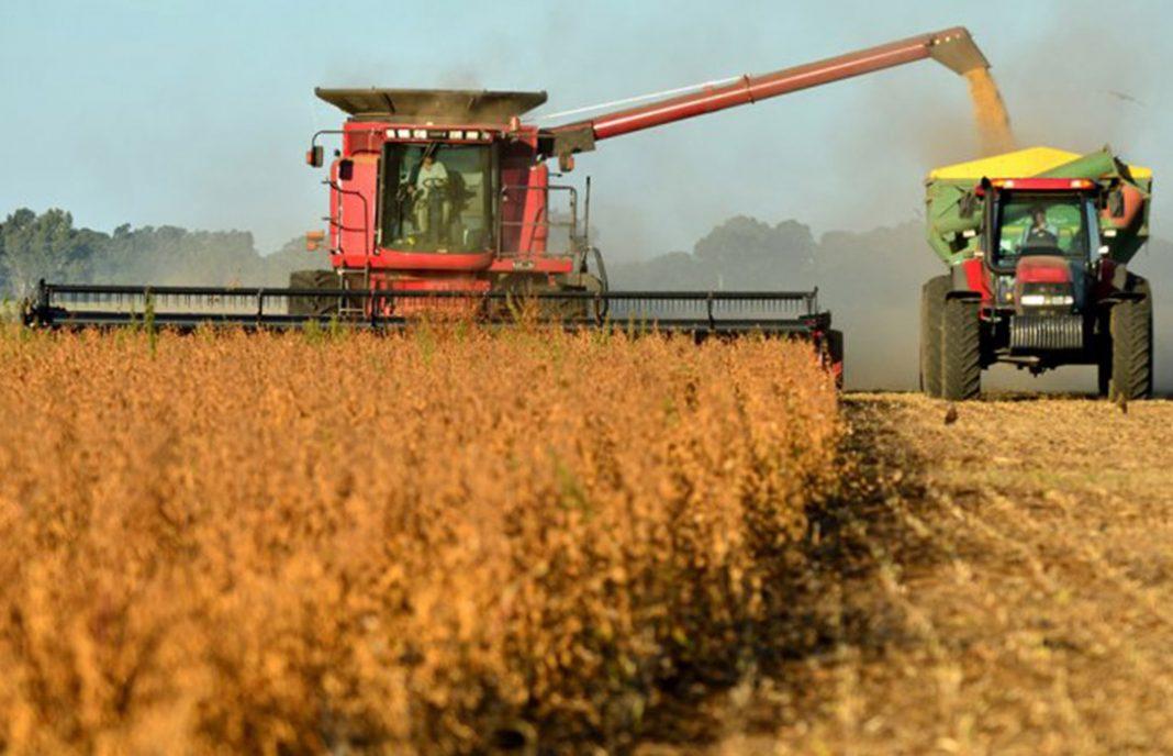 El trigo ganó más de US$ 6 y lideró las subas en Chicago