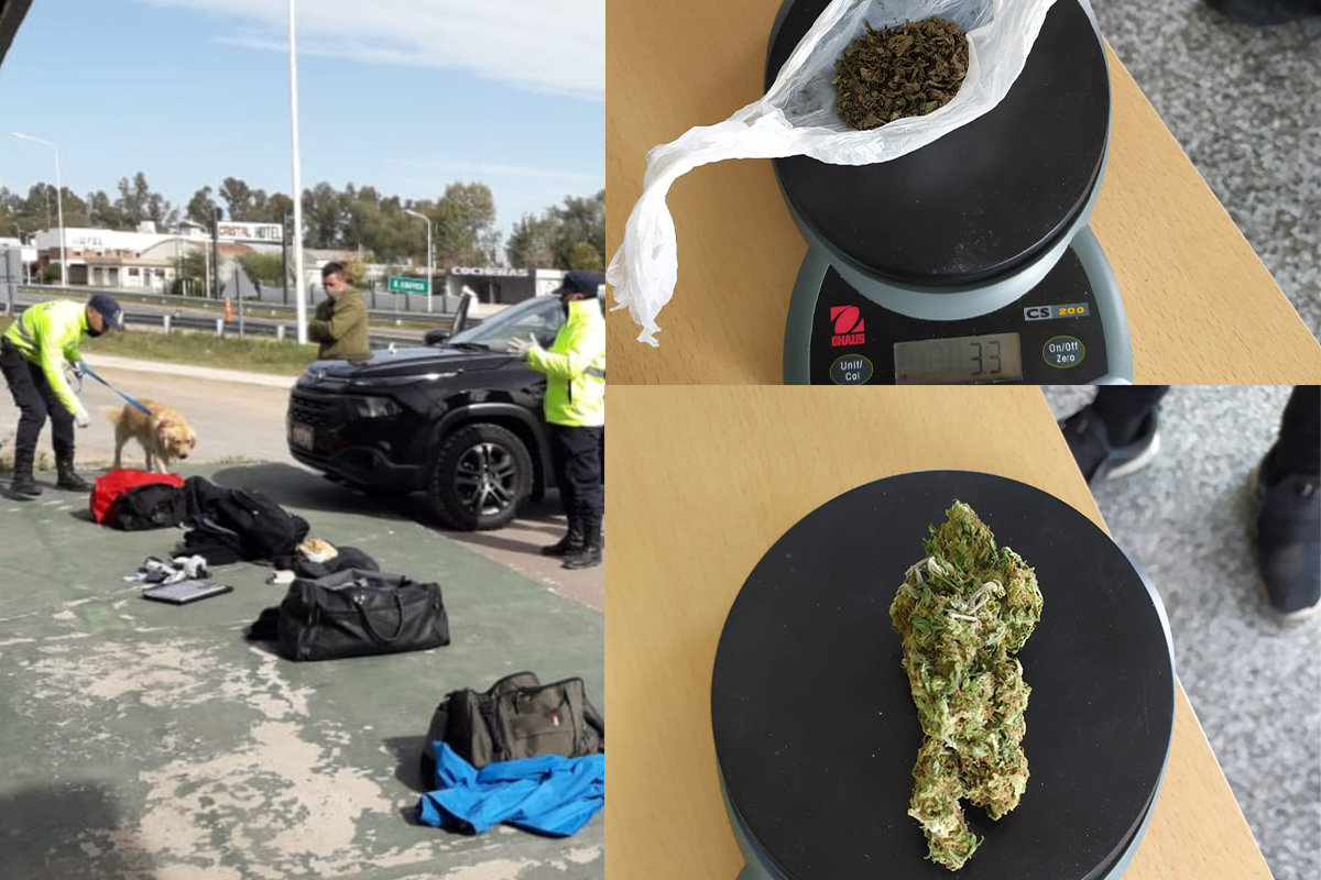 """Eduardo Castex: Con la ayuda del perro """"Catriel"""", detectan droga en un vehículo que provenía de Buenos Aires"""