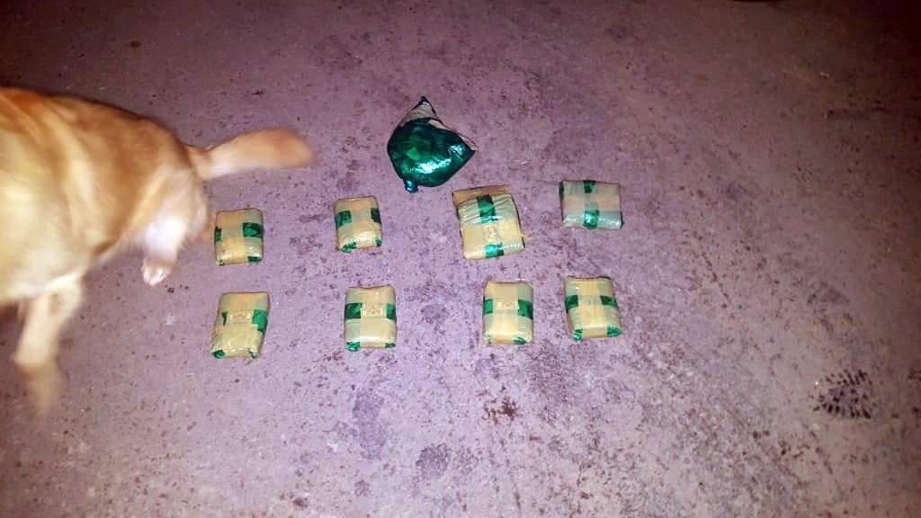 """Detienen un auto con dos personas que llevaban 9 bultos con """"hojas de coca"""": Uno de ellos tenía pedido de captura"""