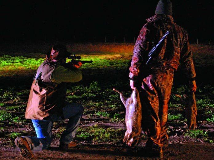 Condenan a un hombre que le disparó a un peón rural al cual confundió con un chancho