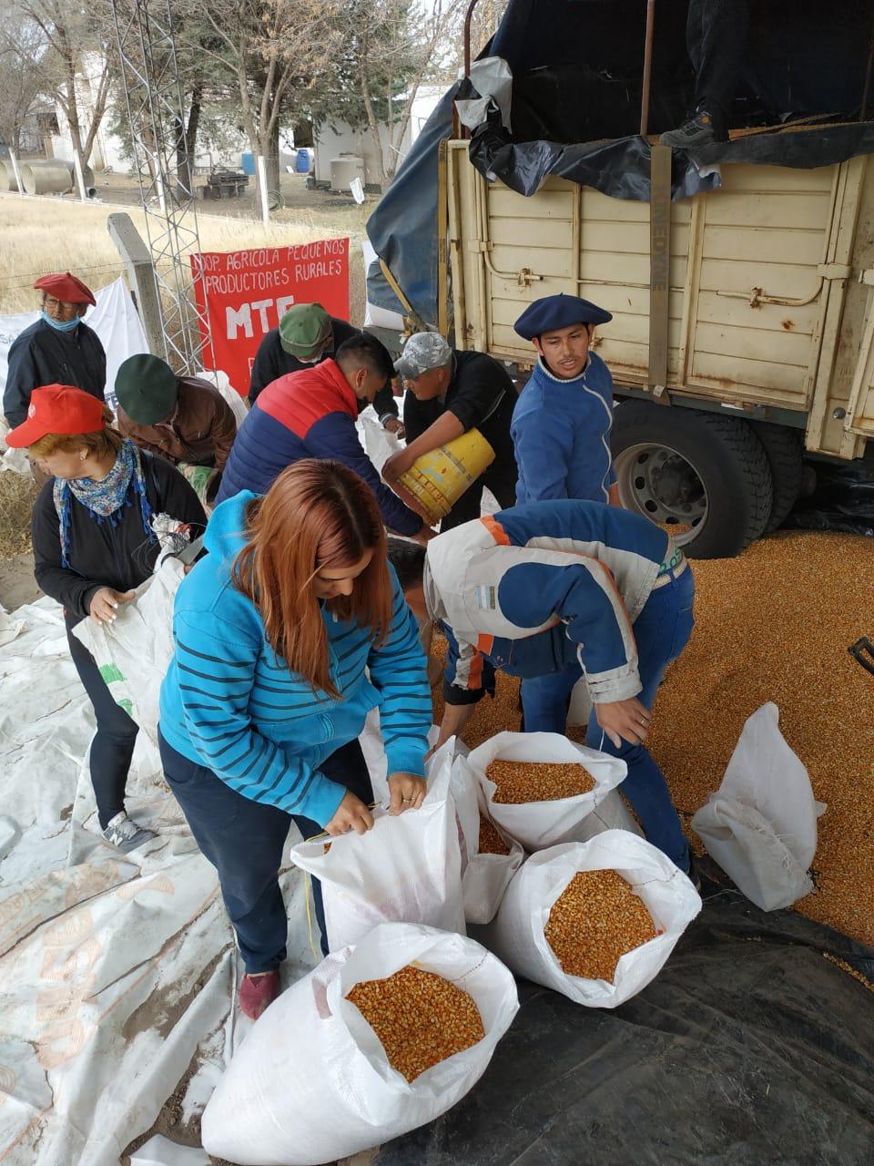Crianceros del oeste pampeano recibieron más de 8 mil kilos de maíz a un precio justo y financiado