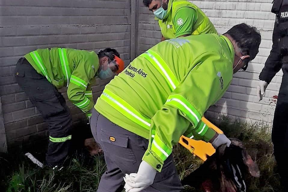 Entró a una casa a robar y lo mataron dos pitbulls: La Policía tuvo que sacrificar a uno de los perros para que suelte al ladrón