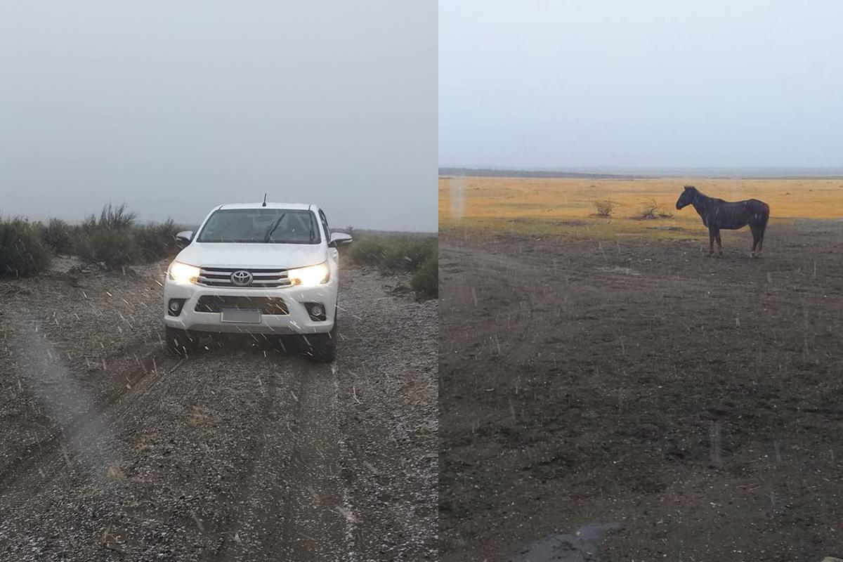 Nevó en el oeste pampeano: el paraje rural de Chos Malal amaneció blanco