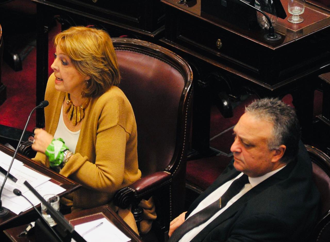 Durango y Lovera junto a otros senadores del Frente de Todos piden corredor aéreo de LADE en la Patagonia