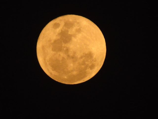 """Mirá las hermosas imágenes de la """"Luna Naranja"""" que se pudo observar anoche en General Pico"""