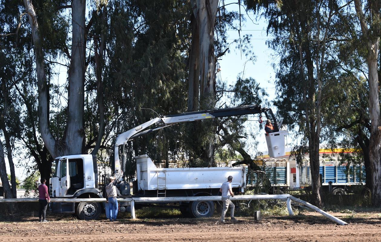 Empezaron las jornadas de limpieza en el Club Hípico Maracó