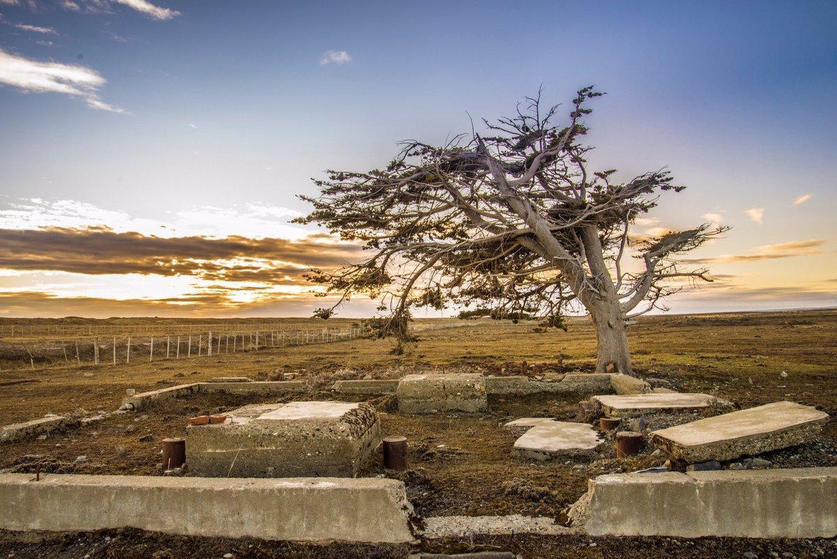 """Se renueva el alerta por """"vientos muy fuertes con ráfagas"""": Podrían superar los 75 km/h en La Pampa"""