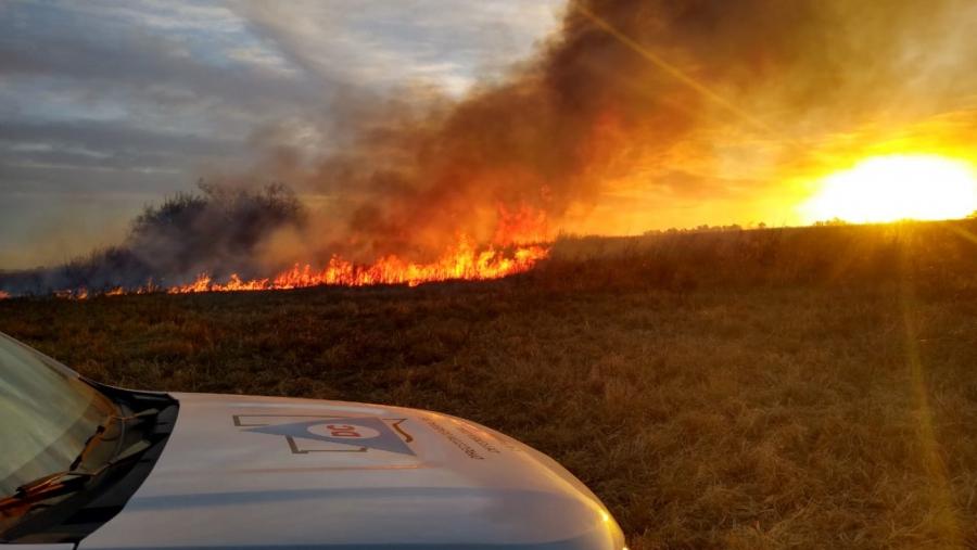 """Desde Defensa Civil indicaron que el incendio de monte en Caleufú """"se habría originado por un fogón mal apagado"""""""