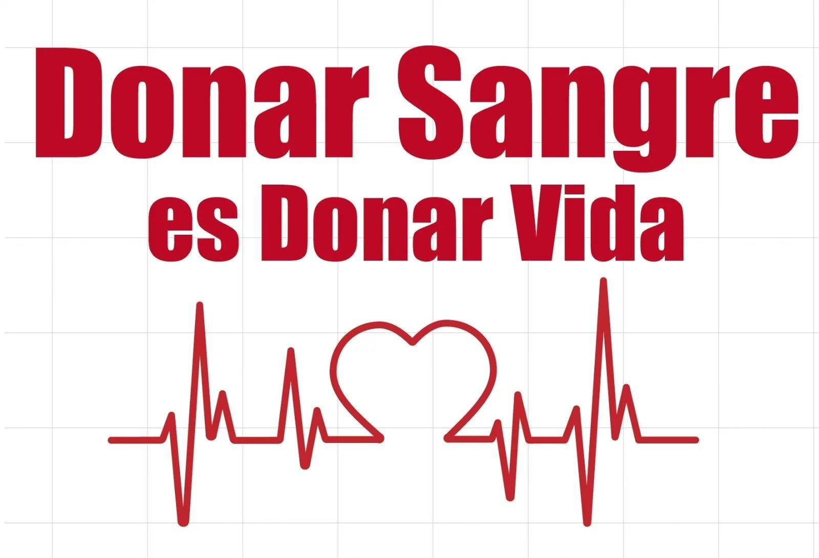Hoy se celebra el Día Nacional del Donante Voluntario de Sangre: Una sola donación puede salvar hasta tres vidas