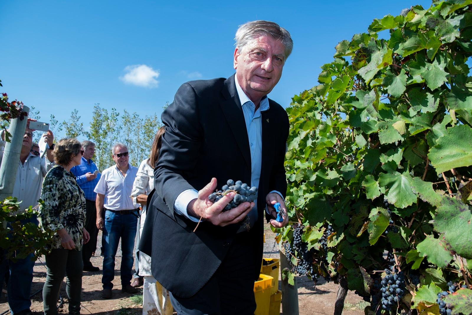El Gobernador anunció que se construirá una bodega en Casa de Piedra