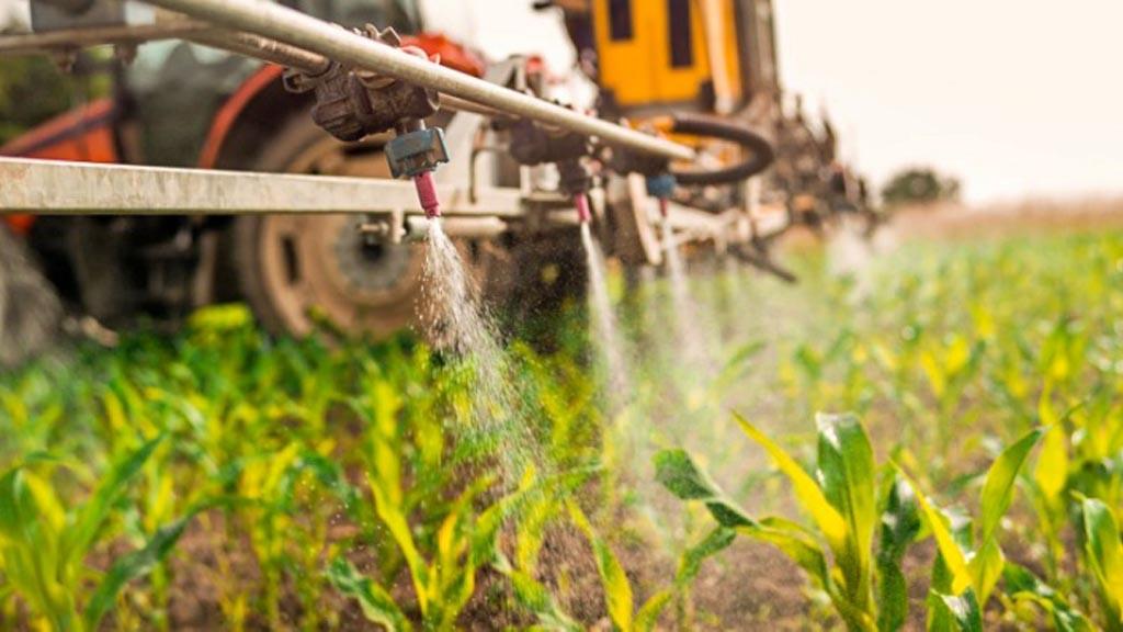 Ley de Plaguicidas: Charla sobre enfermedades en cereales de invierno